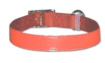 1 inch wide Bravo Nylon Reflecto Dog Collar