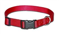 1 inch wide Kwik Klip Adjustable Dog Collar