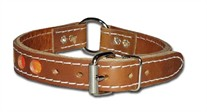 "1"" CR Reflecto Dog  Collar"