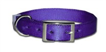 Regular Nylon Dog Collar 1 Inch Wide