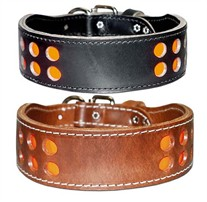 2 Row Inlaid Reflecto  Dog Collar 2 Inches Wide