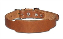 Beagle Dog Collar 3/4 Inch Wide