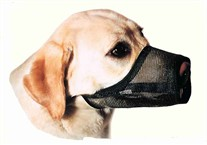 Best Fit Mesh Dog Muzzles