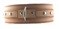2.5 Wide STUD Dog Collar