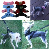 Freedom Dog Harness
