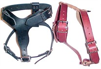 Small Leather Dog Harness