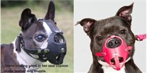 Custom Made Leather Dog Muzzle