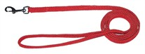 Rainboe Dog Lead 4 Ft.