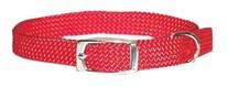 Rainboe Dog Collar 3/8 Inch