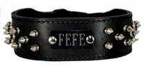 2 inch wide Spike Dog Collar with Name Plate Space