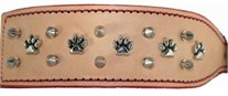 Wide Russet  Dog Collar with Paws and Spikes